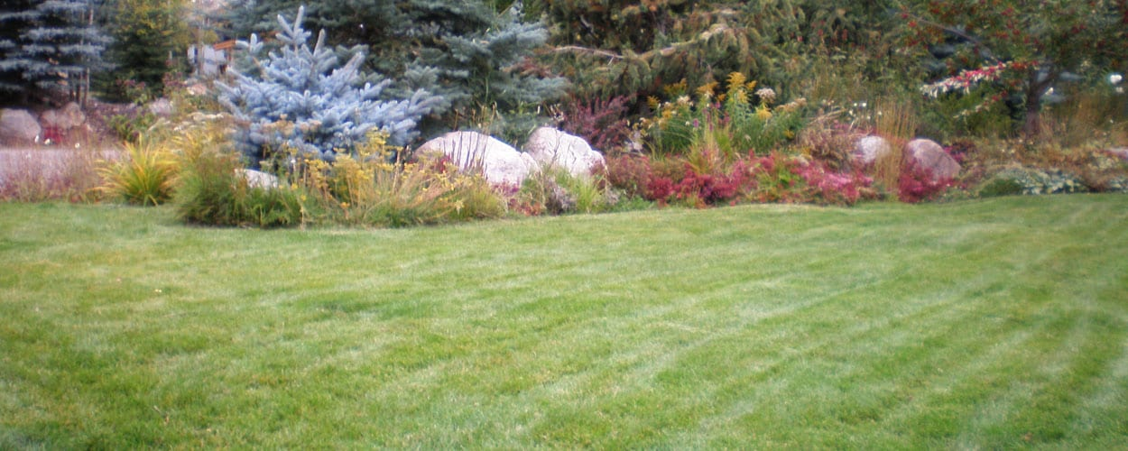 High-End Landscape & Lawn Maintenance in Vail Valley